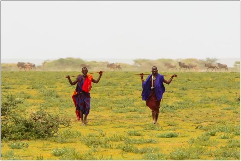 Maasai Wanderings
